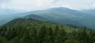 Balsam Mtn from Mt. Sterling